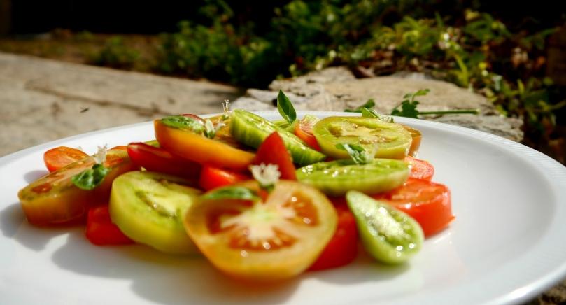 tomates de près